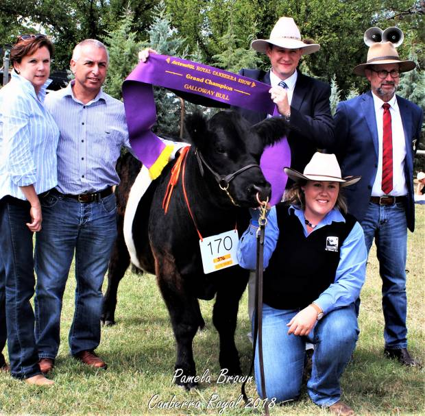 Supreme Champion at CANBERRA ROYAL 2018