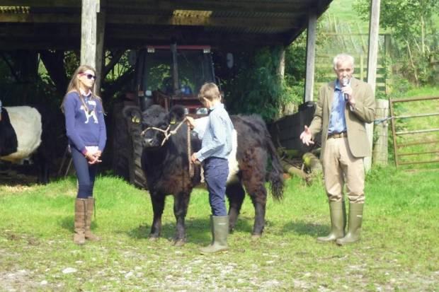 Scottish Belted Galloway Club Visit